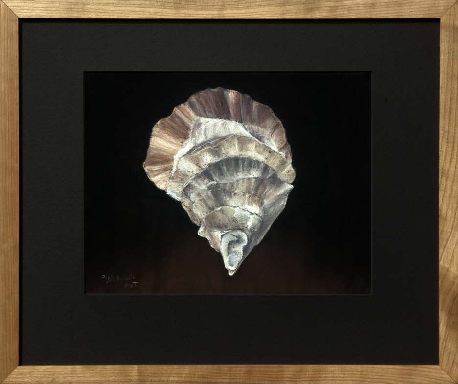 framed-oyster-shell-gay-island-me-2